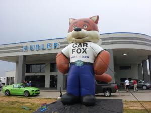 Car Fox
